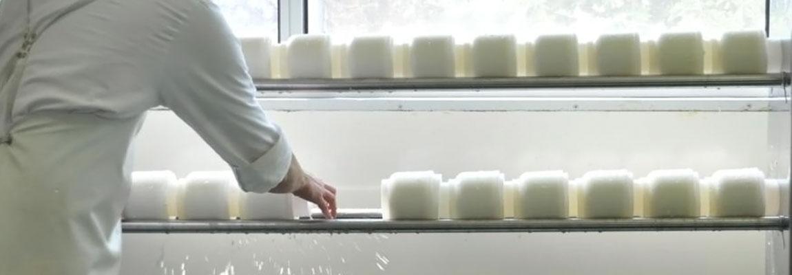Atelier de fromagerie artisanale du Fédou.