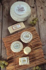 2004, gamme de fromages du Fédou, tomme, brique, pérail, rocaillou, Pavé.
