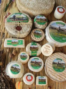 fromages de hyelzas au lait cru de brebis